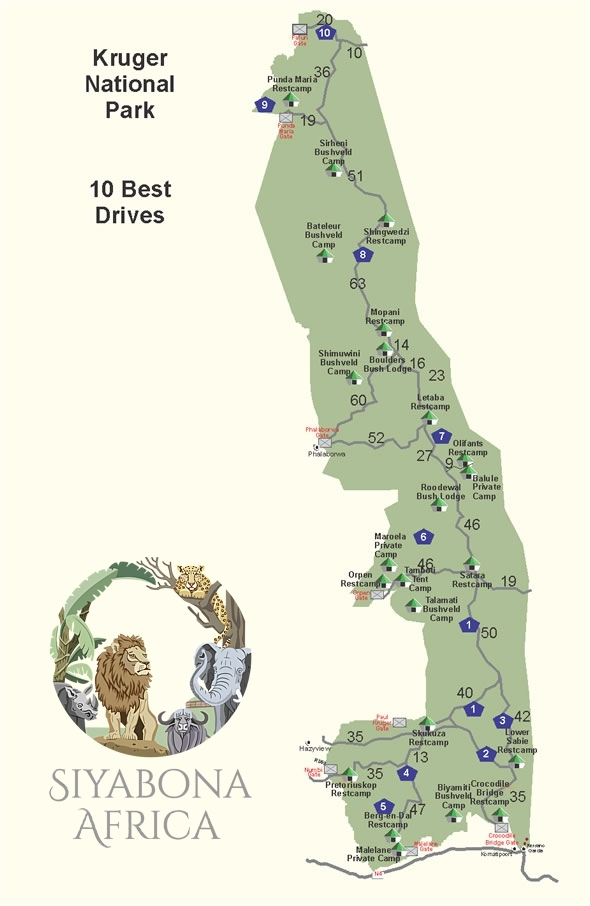 Map of the Ten Best Self-drive Safaris in Kruger Park Drive Map on