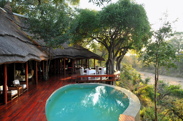 Imbali Safari Lodge pool with a bush view.