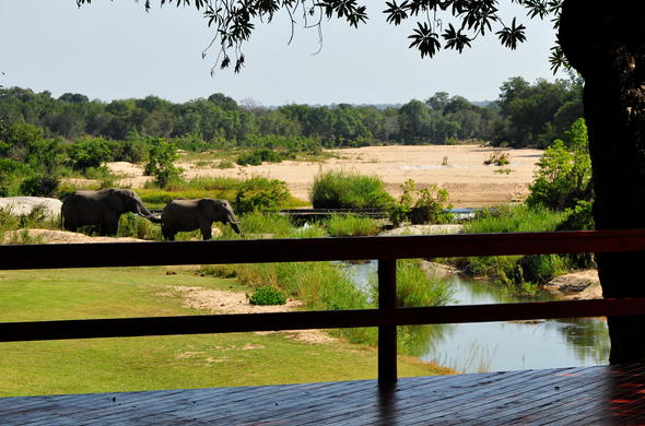 Striking views from the game viewing deck at Inyati Game Lodge.
