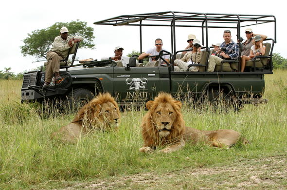 Game drive in open safari vehicle in Kruger Park.