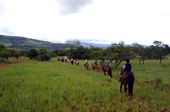 Unique horse trails safari experience.