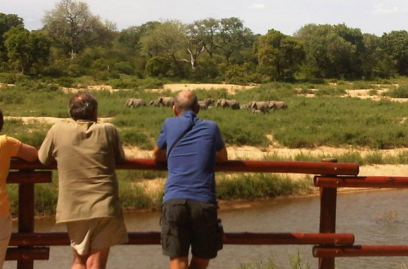 Watch passing by wildlife from a game viewing deck in the Kruger National Park