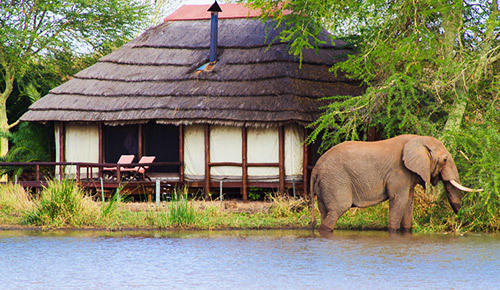 Kruger National Park safari lodge.