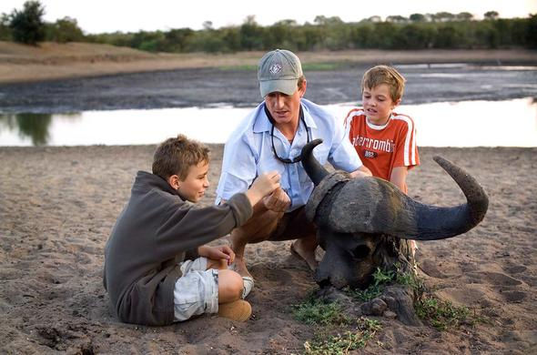 Kruger Park family safari