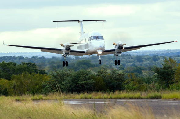 Fly directly to an airstrip in the Kruger Park.
