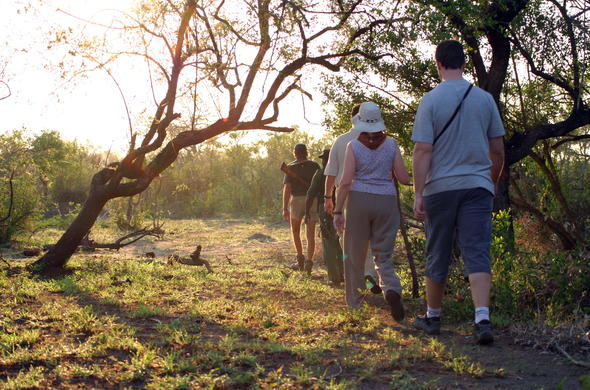 Get close to nature on a Kruger Park walking safari.
