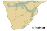 Map of common regions lions are found.