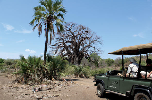 Game drive in open safari vehicle in Kruger National Park.