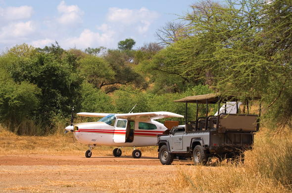 Land at a remote airstrip in Kruger Park.