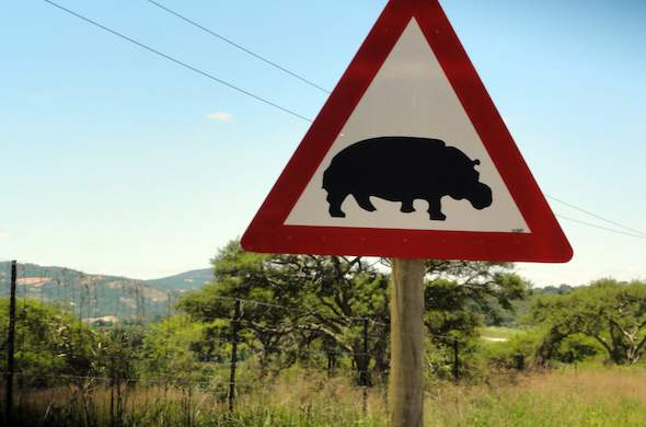 Beware hippos road sign on the road to Kruger Park.