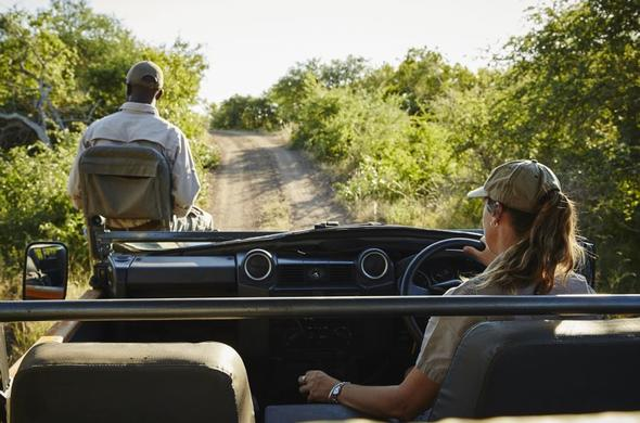 Off-road game drive in open 4x4 safari vehicle in Kruger Park.