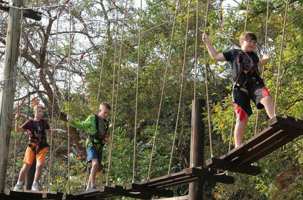 Family friendly treetop challenge in Hazyview.